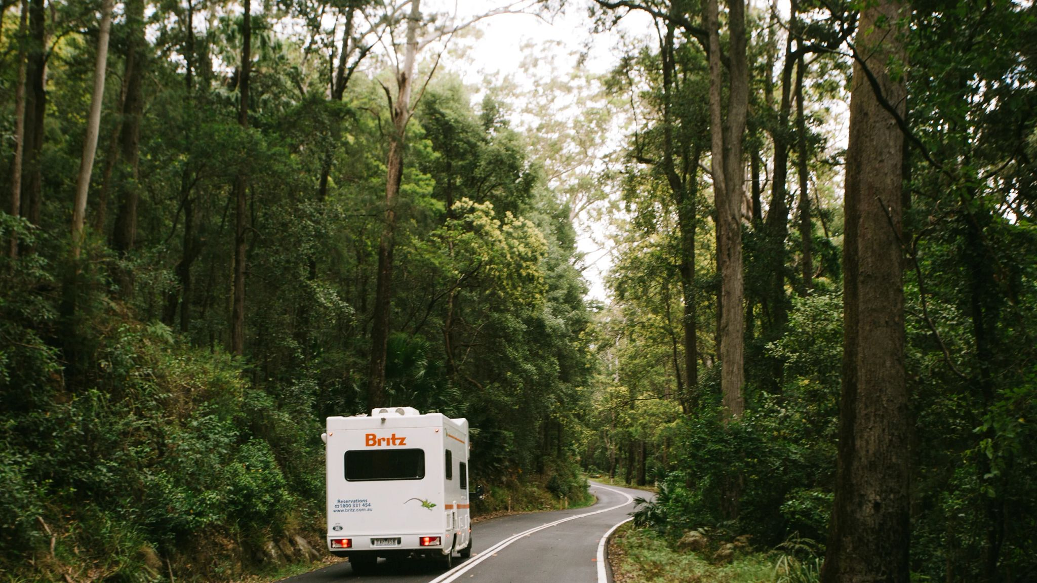 NSW Royal National Park - Mark Clinton - driving scenic exterior 86.jpg