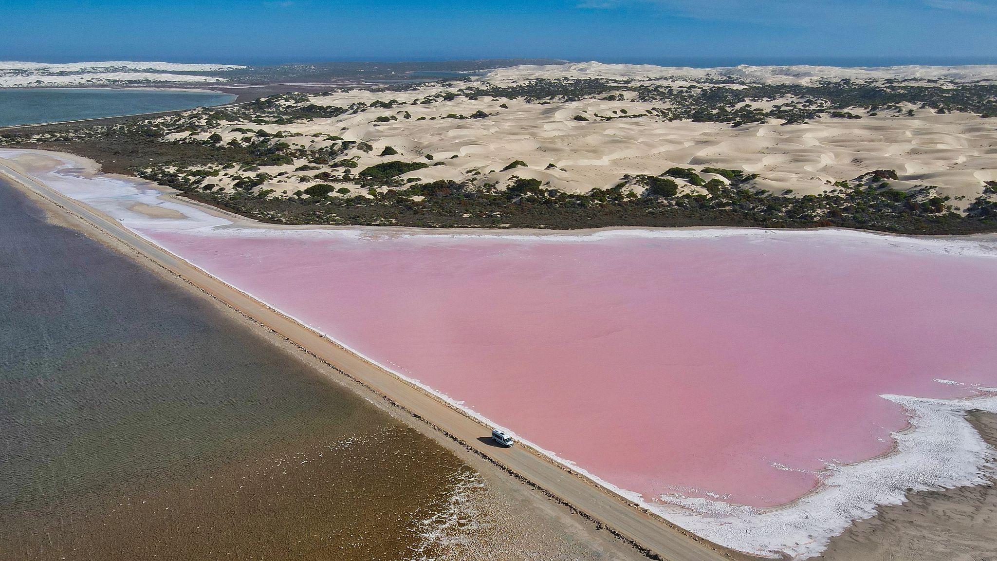 Pink Lake.jpeg